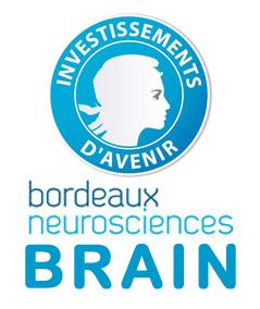 Logo_BRAINo